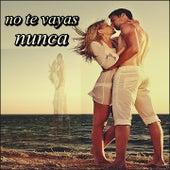 No Te Vayas Nunca von Various Artists