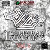 Thorobredz Dark Husslaz Vol 2 by Various Artists
