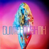 Bunter Musik Mix, Vol. 1 von Various Artists