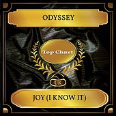 Joy (I Know It) (UK Chart Top 100 - No. 51) by Odyssey