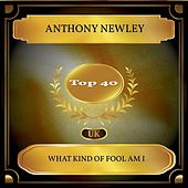 What Kind Of Fool Am I (UK Chart Top 40 - No. 36) von Anthony Newley