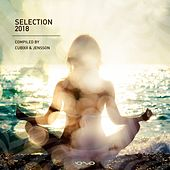 Selection 2018 by Various Artists