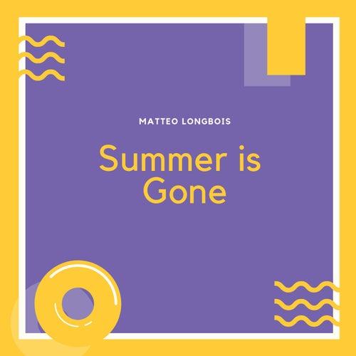 Summer Is Gone van Matteo Longbois