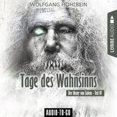 Tage des Wahnsinns - Der Hexer von Salem 4 (Gekürzt) von Wolfgang Hohlbein