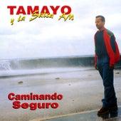 Caminando seguro (Remasterizado) de Tamayo y su Salsa AM