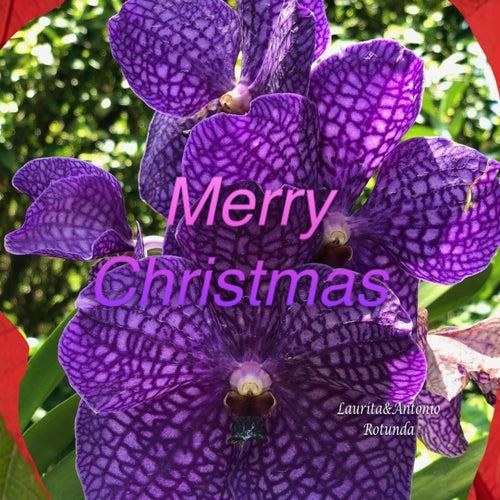 Merry Christmas von Antonio Rotunda