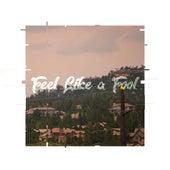 Feel Like a Fool by finn.