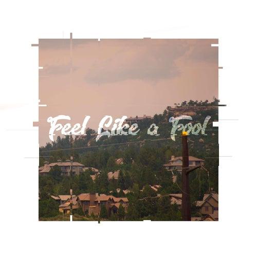 Feel Like a Fool von finn.