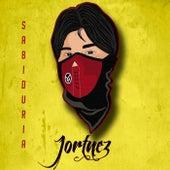 Sabiduría de Jortnez