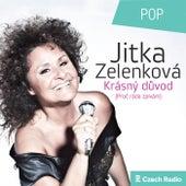 Krásný důvod de Jitka Zelenková