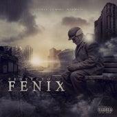 Proyecto Fenix von Crisler