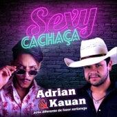 Sexy Cachaça de Various Artists