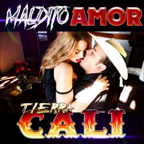 Maldito Amor by Tierra Cali