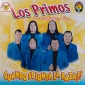 Cuando Se Junta La Raza by Los Primos