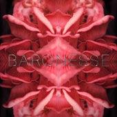 Baronesse by Hjaltalín