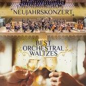 Neujahrskonzert - Best Orchestral Waltzes by Various Artists