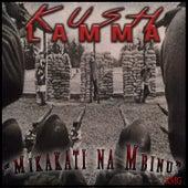 Mikakati Na Mbinu by Kush Lamma