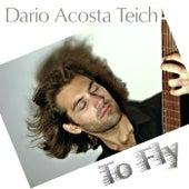 To Fly de Dario Acosta Teich