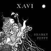 Xavi by Snarky Puppy