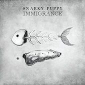 Immigrance von Snarky Puppy