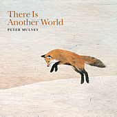 There Is Another World by Peter Mulvey