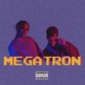 Megatron de Pnthn