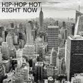 Hip-Hop Hot Right Now von Various Artists