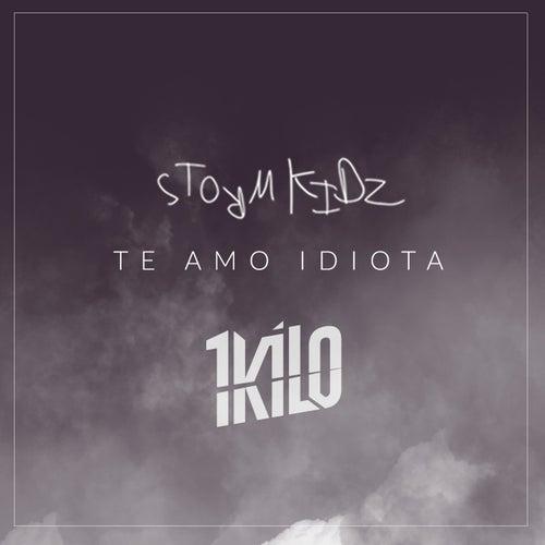 Te Amo Idiota by 1Kilo