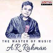 The Master of Music by Various Artists