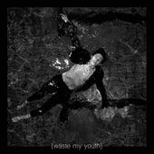 Waste My Youth by Ruben Pol