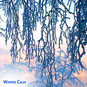 Winter Calm Ambient Chants by SoundEscapers