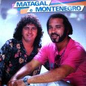 Nossa Música by Matagal e Montenegro