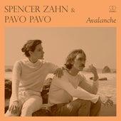 Wayward (Pavo Pavo Remix) by Spencer Zahn
