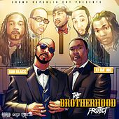 The Brotherhood Project von Various Artists
