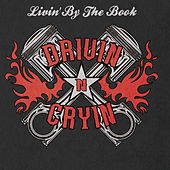 Livin' by the Book by Drivin' N' Cryin'