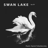 Swan Lake, Op. 20 von Pyotr Ilyich Tchaikovsky
