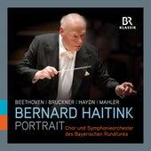Bernard Haitink: Portrait (Live) von Various Artists