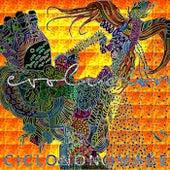 Ciclo No Nómade, Vol. VII: Evolución de Various Artists