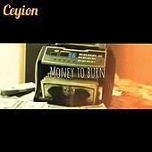 Money to Burn by Ceyion