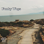 Funky Ways de Go Music