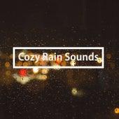 Cozy Rain Sounds by Nature Sounds (1)