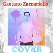 Cover de Gaetano Zaccariello