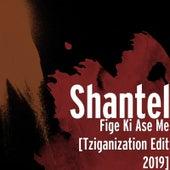 Fige Ki Ase Me (Tziganization Edit 2019) by Shantel