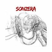 Sonzera by Sonzera Rock
