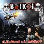 El Llamado a la Rebelión von Boikot