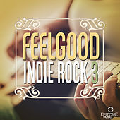 Feelgood Indie Rock, Vol. 3 by Various Artists