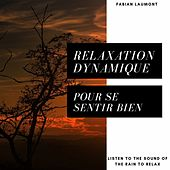 Relaxation Dynamique Et Chant Celtique (Musique Pour Se Détendre) von Fabian Laumont