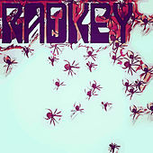 No Strange Cats...Spiders by Radkey