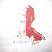 Fragments of Me de Ben Laver