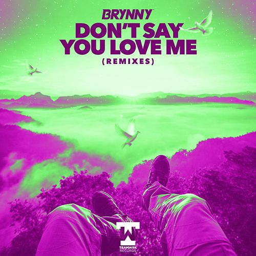 Don't Say You Love Me (Remixes) von Brynny